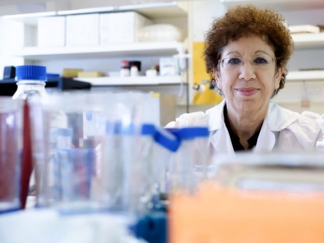 Cancer Treatment Developed at BGU Shows Ability to Reprogram Cancer Cells to Pre-Cancerous State