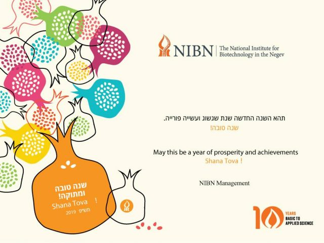 Happy New Year from the NIBN !