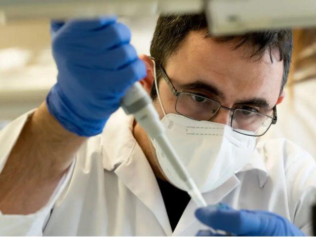 שיטת האיגום לייעול בדיקות הקורונה – פיתוח של המכון הלאומי לביוטכנולוגיה