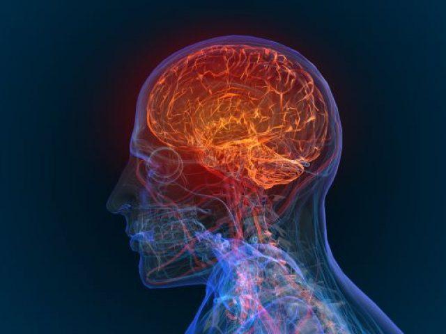 דר' ברק רוטבלאט - הקשר הגנטי בין הזדקנות המוח להתפתחות סרטן המוח