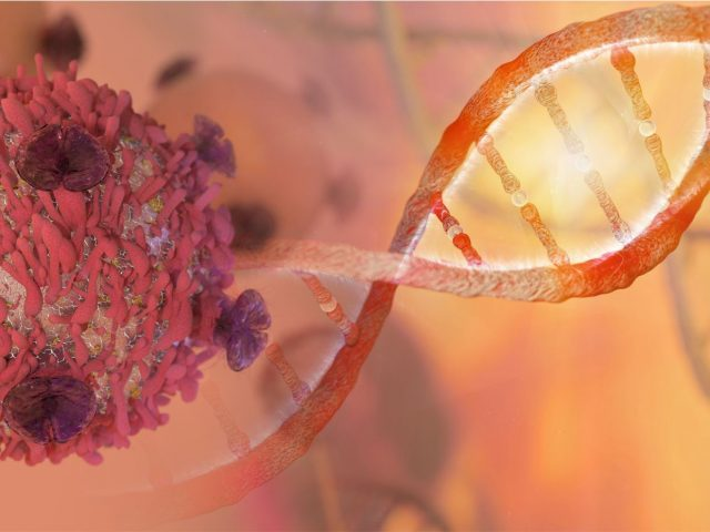 Dr. Barak Rotblat – The genetic link between aging brain and Cancer